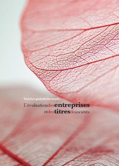 Guide de la DGI : Evaluation des Entreprises et des Titres de Sociétés
