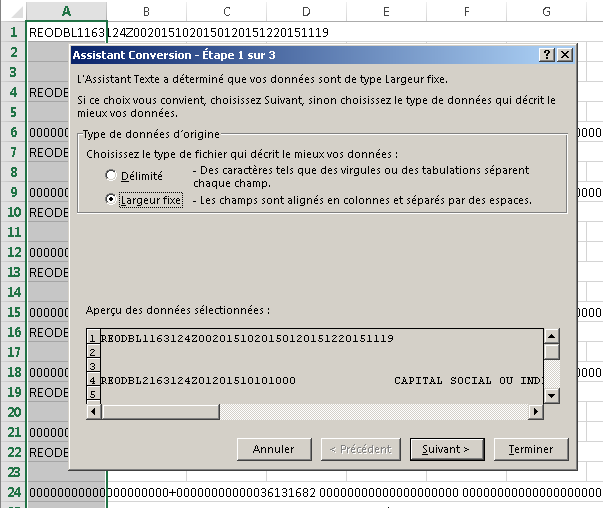 Assistant de conversion d'Excel : choix du type de données d'origine